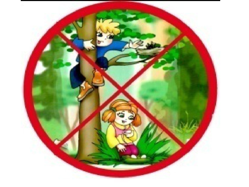 Веер, картинки запрещающих знаков в природе