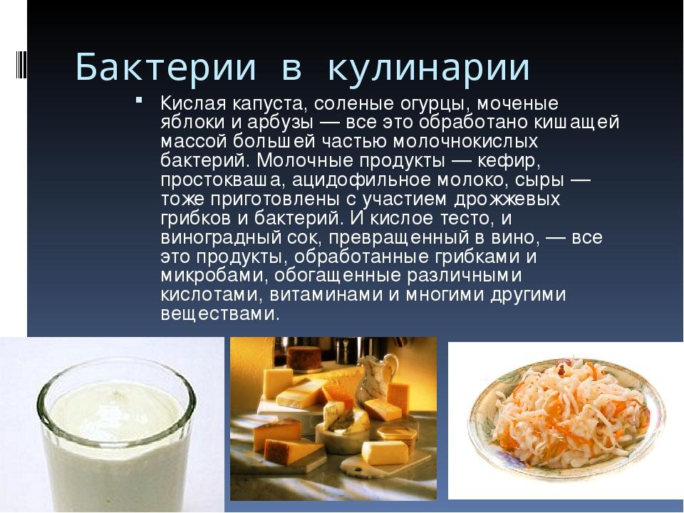 Бактерии в кулинарии Кислая капуста, соленые огурцы, моченые яблоки и арбузы...
