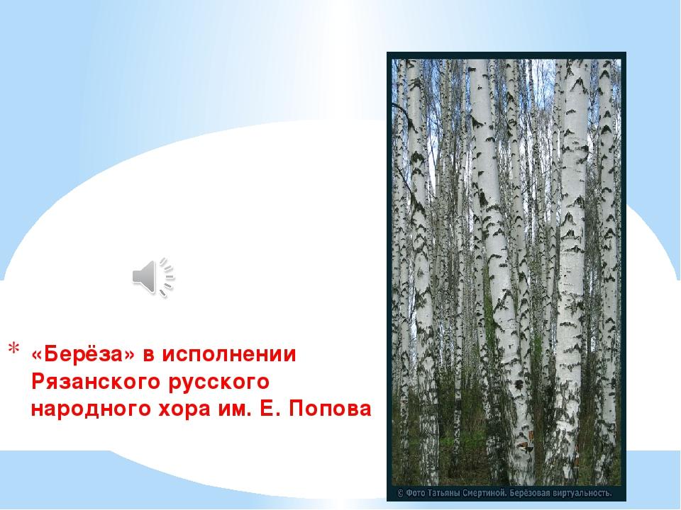 «Берёза» в исполнении Рязанского русского народного хора им. Е. Попова