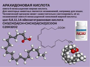 АРАХИДОНОВАЯ КИСЛОТА омега-6-ненасыщенная жирная кислота. Для некоторых живот