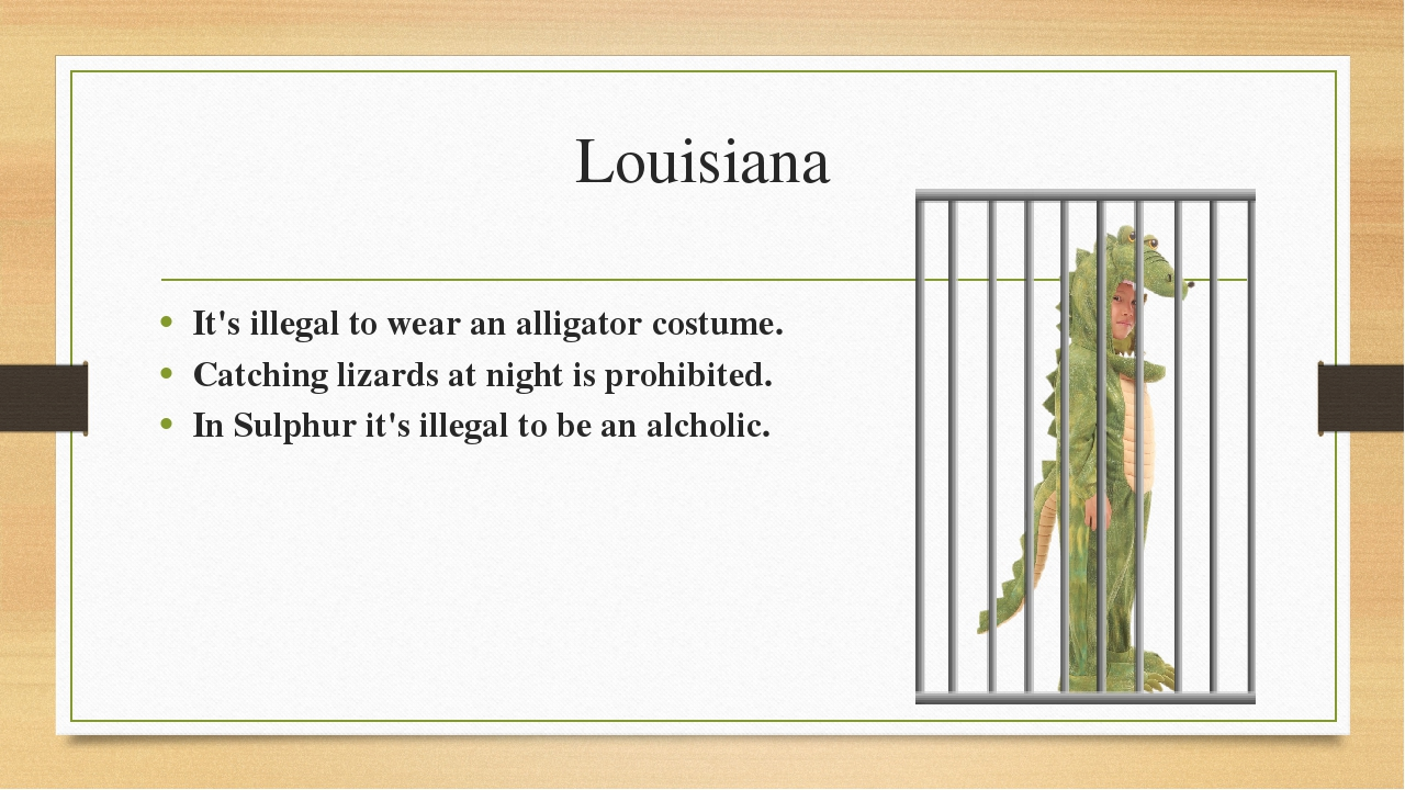 Louisiana It's illegal to wear an alligator costume. Catching lizards at nigh...