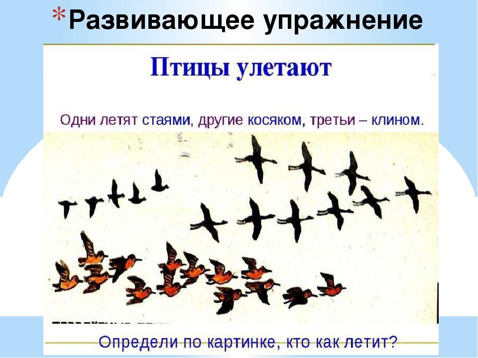 летят гдз птицы перелетные лишним является