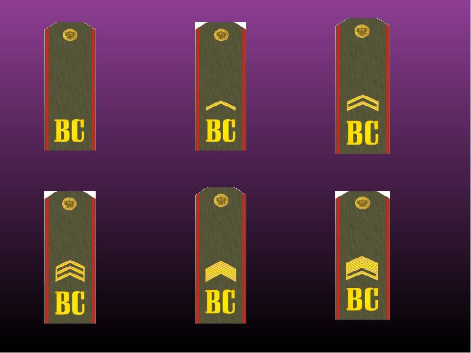 картинки военных погон по званьям через