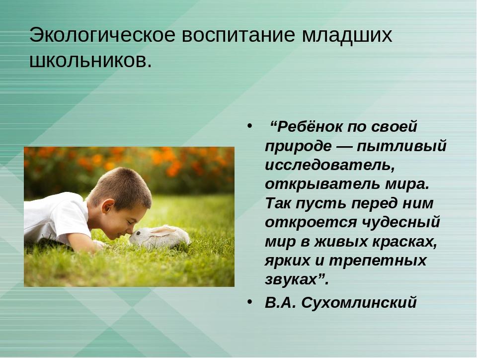 Дипломная работа по теме экологическое воспитание младших школьников 607