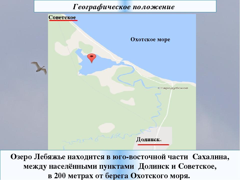Озеро Лебяжье находится в юго-восточной части Сахалина, между населёнными пун...