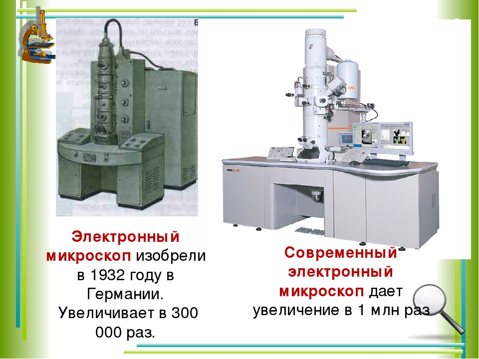 Современный электронный микроскоп дает увеличение в1 млн раз Электронный мик...