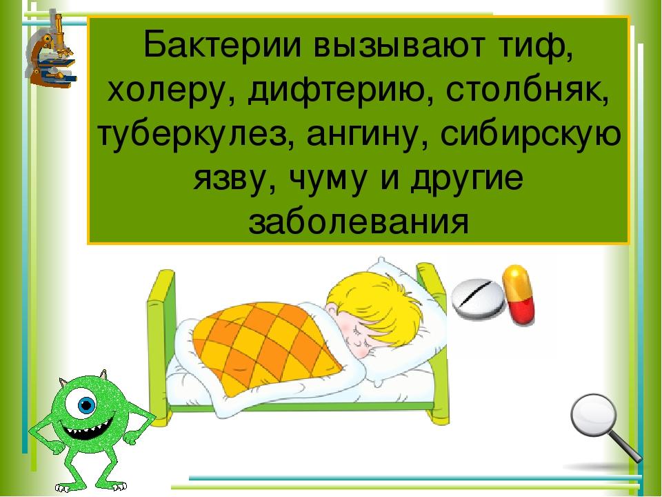 Бактерии вызывают тиф, холеру, дифтерию, столбняк, туберкулез, ангину, сибирс...
