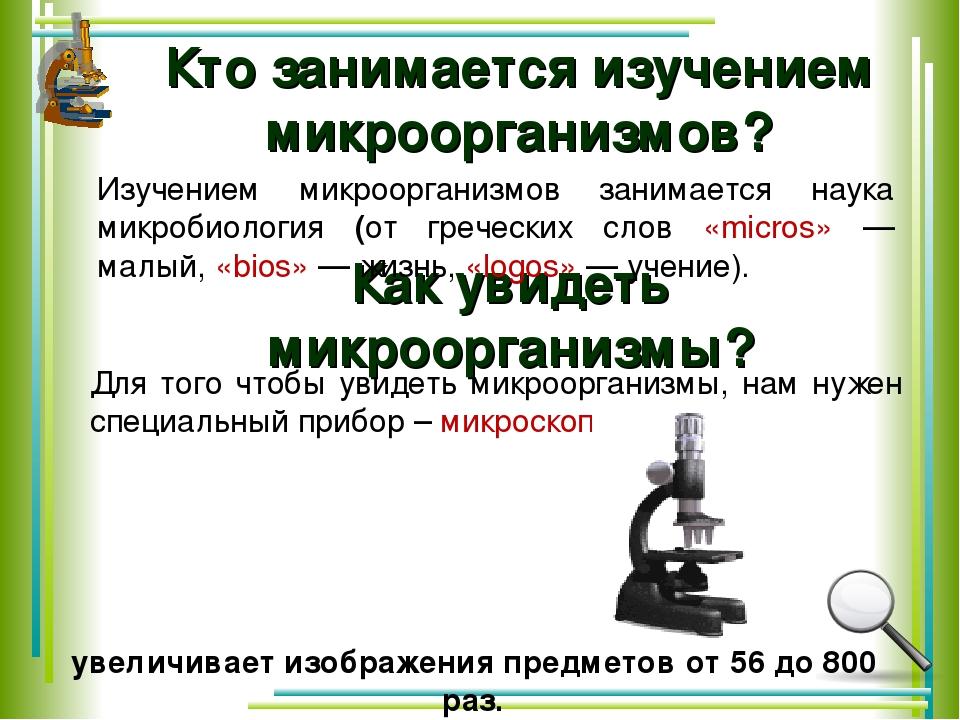 Как увидеть микроорганизмы? Для того чтобы увидеть микроорганизмы, нам нужен...