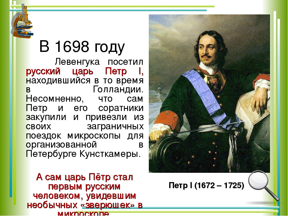 В 1698 году Левенгука посетил русский царь Петр I, находившийся в то время в...