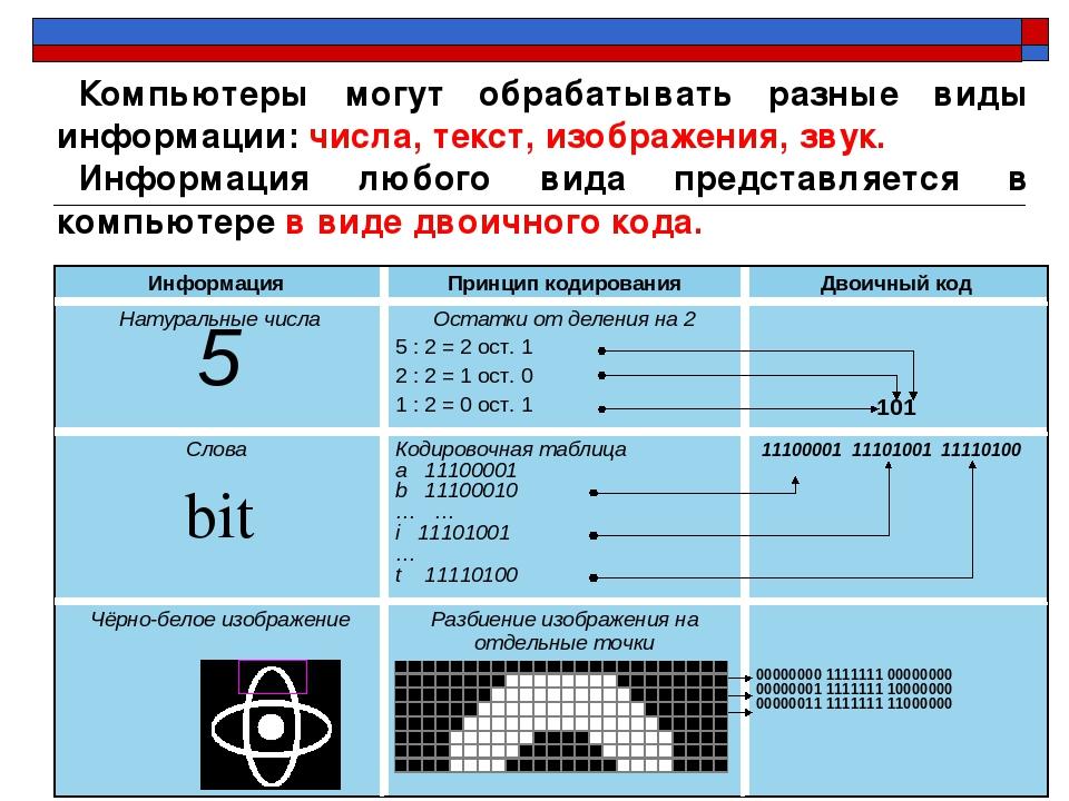 Компьютеры могут обрабатывать разные виды информации: числа, текст, изображен...