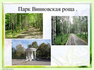 Парк Винновская роща .