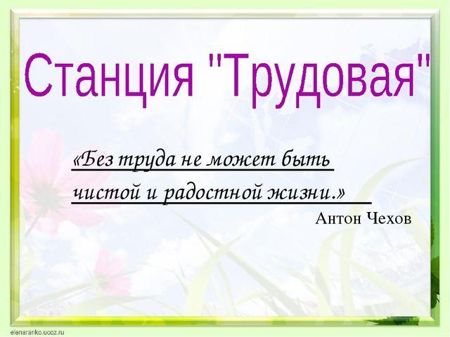 «Без труда не может быть чистой и радостной жизни.» Антон Чехов