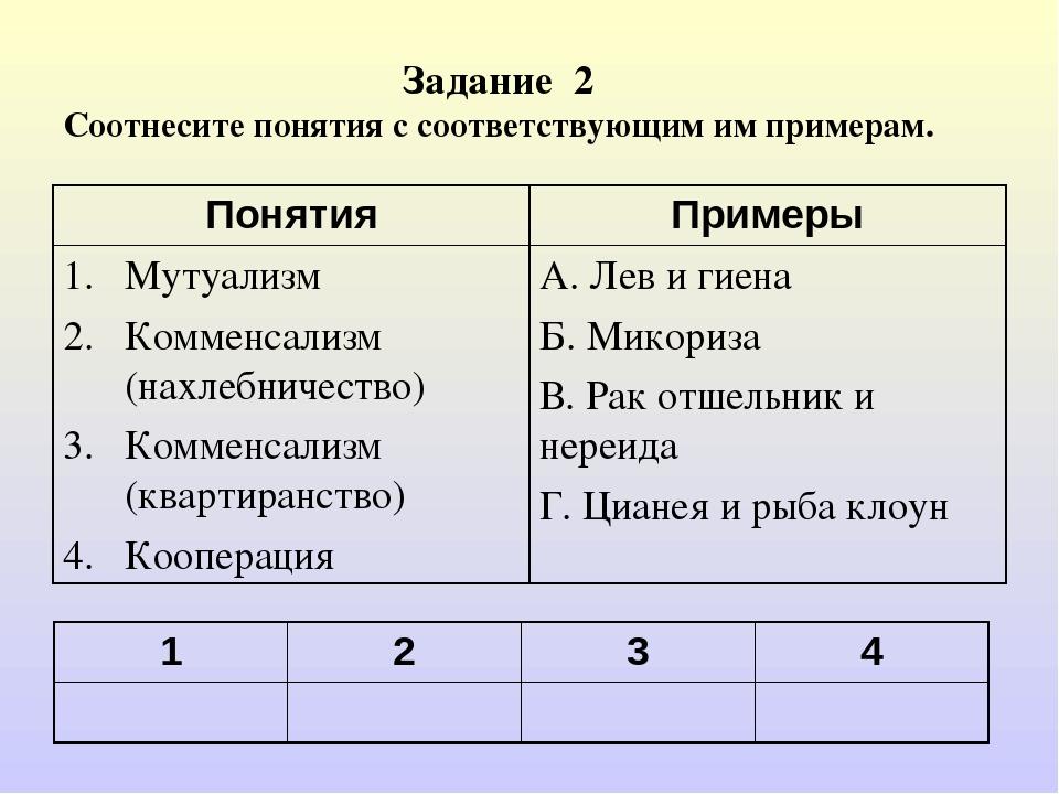 Задание 2 Соотнесите понятия с соответствующим им примерам. 1234