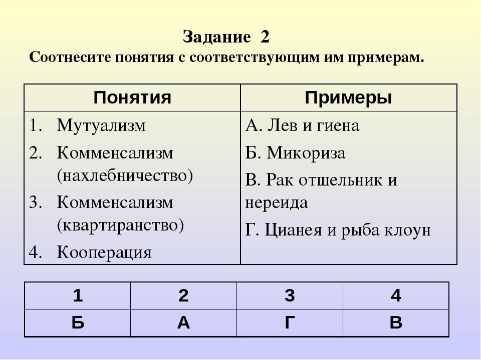 Задание 2 Соотнесите понятия с соответствующим им примерам. 1234 БАГВ