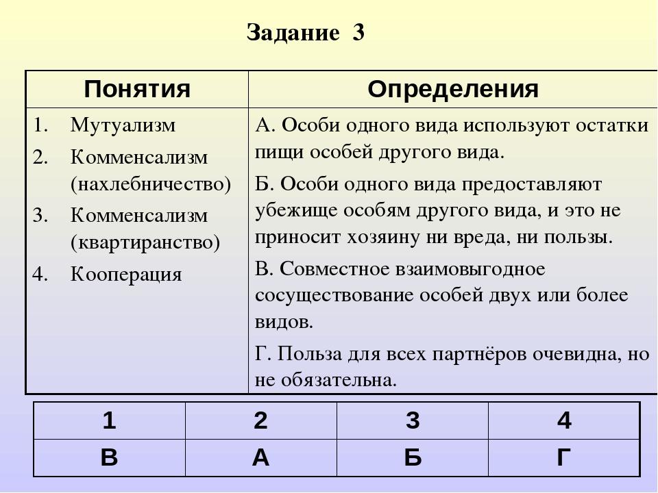 Задание 3 1234 ВАБГ