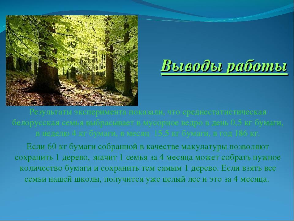Как макулатура помогает сохранить леса куда сдать макулатуру спб