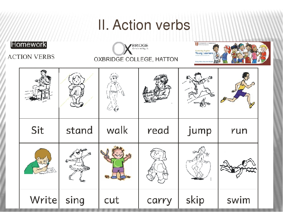 cover letter action verbs