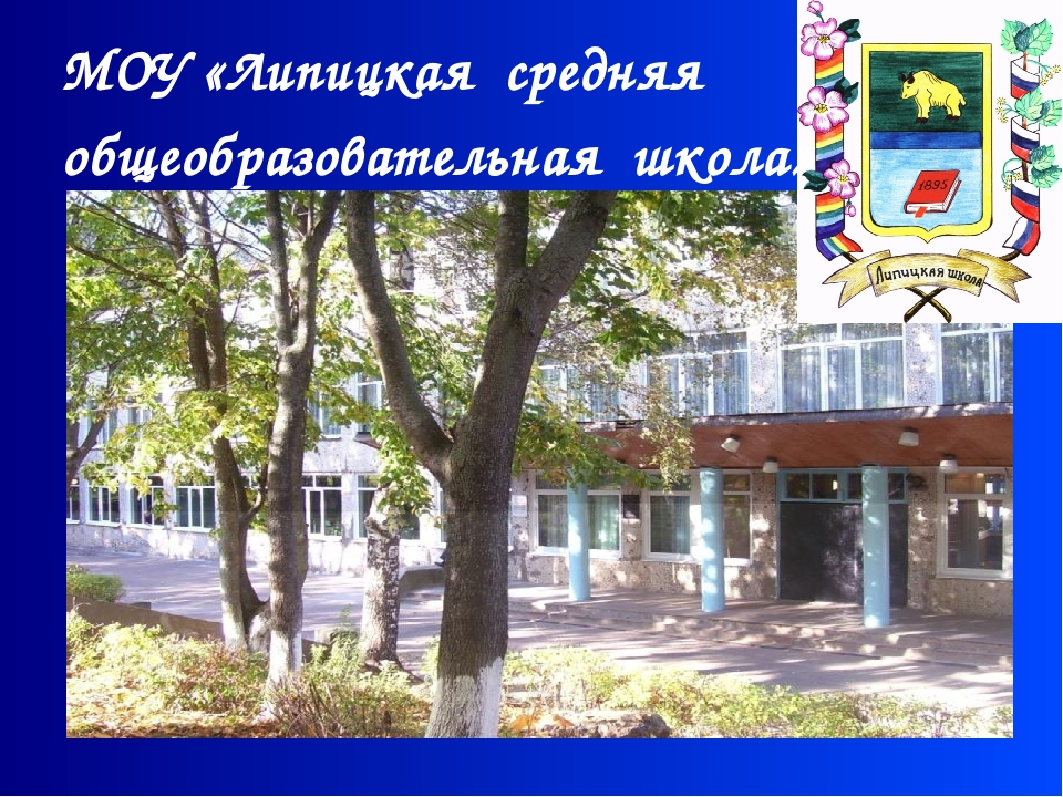 МОУ «Липицкая средняя общеобразовательная школа»