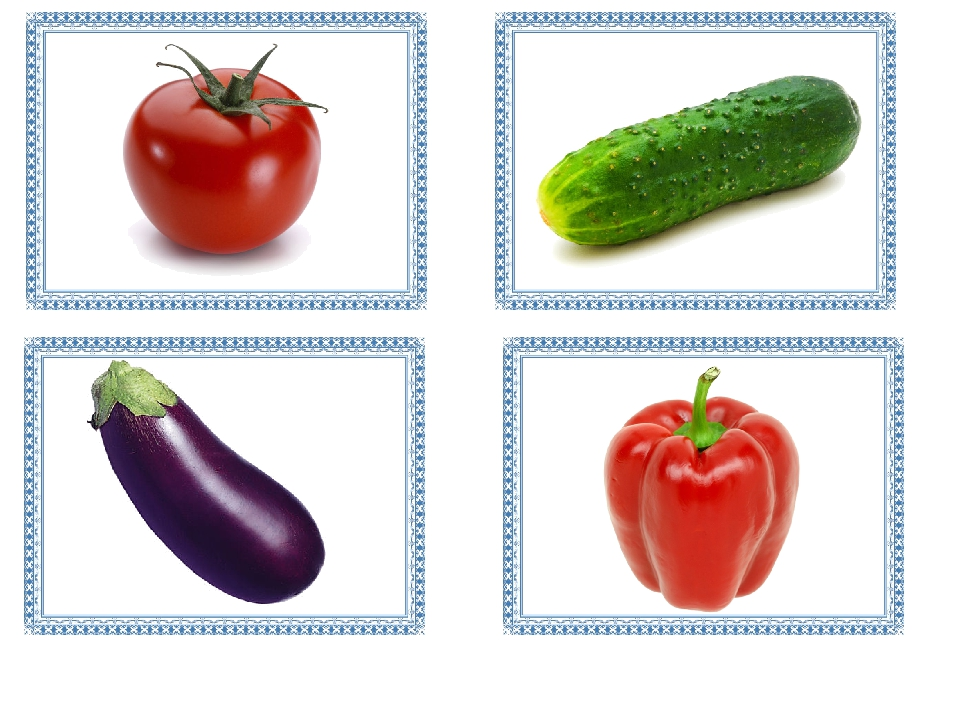 картинки овощей для занятий объясняется выбор название