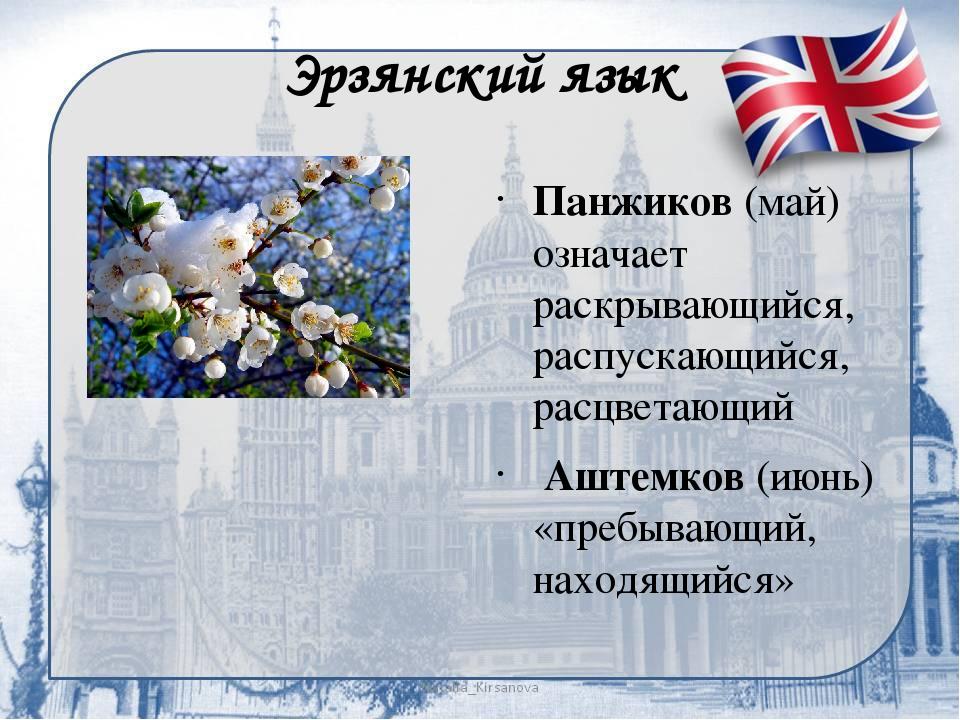 Эрзянский язык Панжиков (май) означает раскрывающийся, распускающийся, расцв...
