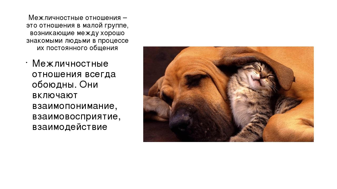 Межличностные отношения – это отношения в малой группе, возникающие между хор...