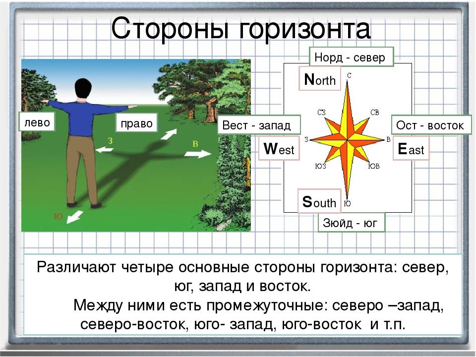 Картинка стороны горизонта для детей
