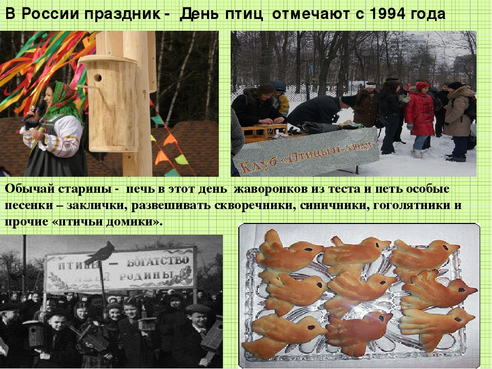 В России праздник - День птиц отмечают с 1994 года Обычай старины - печь в эт...