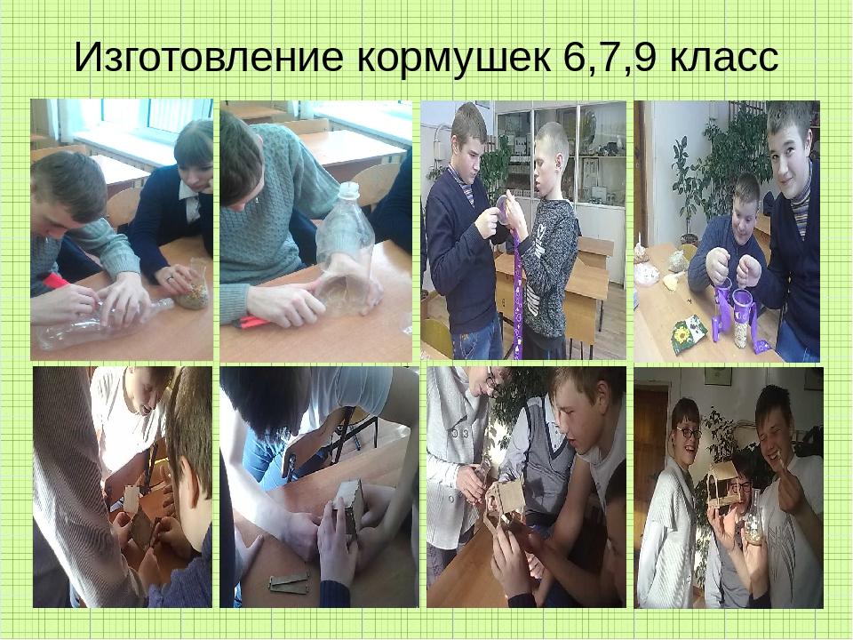 Изготовление кормушек 6,7,9 класс