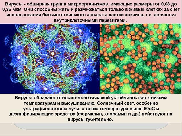 Вирусы - обширная группа микроорганизмов, имеющих размеры от 0,08 до 0,35 мкм...