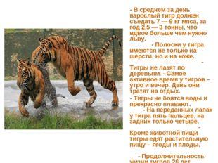 - В среднем за день взрослый тигр должен съедать 7 — 9 кг мяса, за год 2,5 —