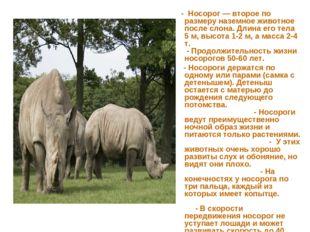 - Носорог — второе по размеру наземное животное после слона. Длина его тела