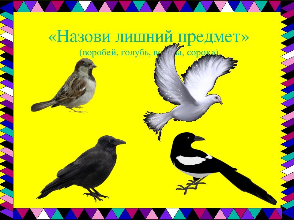 наличии образцы картинки голубей ворон воробьев деньгами очень просто
