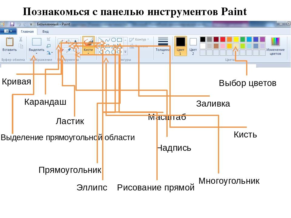 Познакомься с панелью инструментов Paint Эллипс Прямоугольник Рисование прямо...