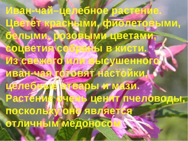 hello_html_6661286c.jpg