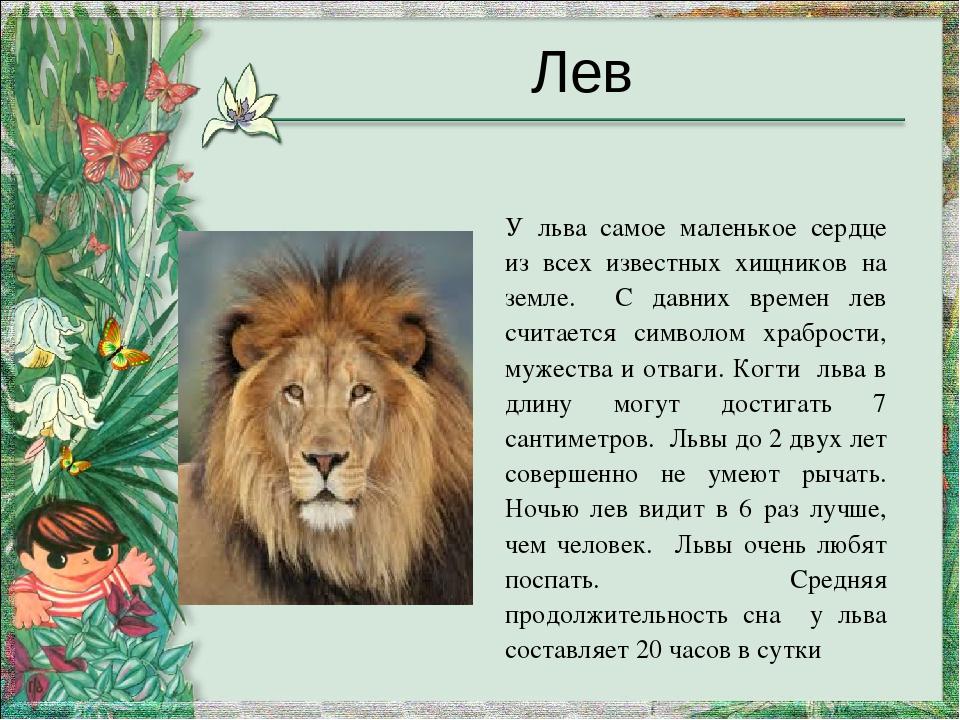Характер девушки под знаком льва