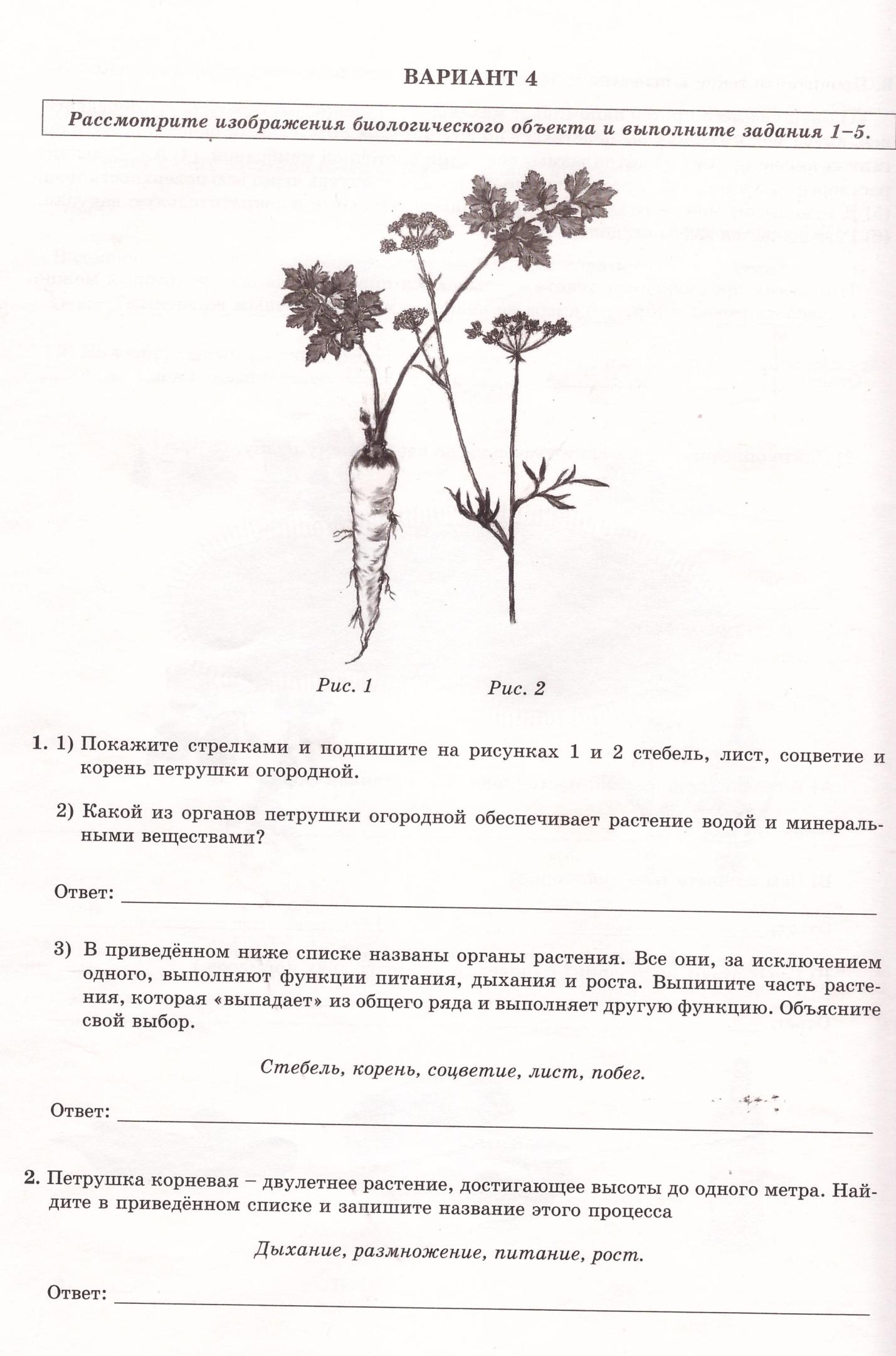 Кдр биология 11 класс ноября