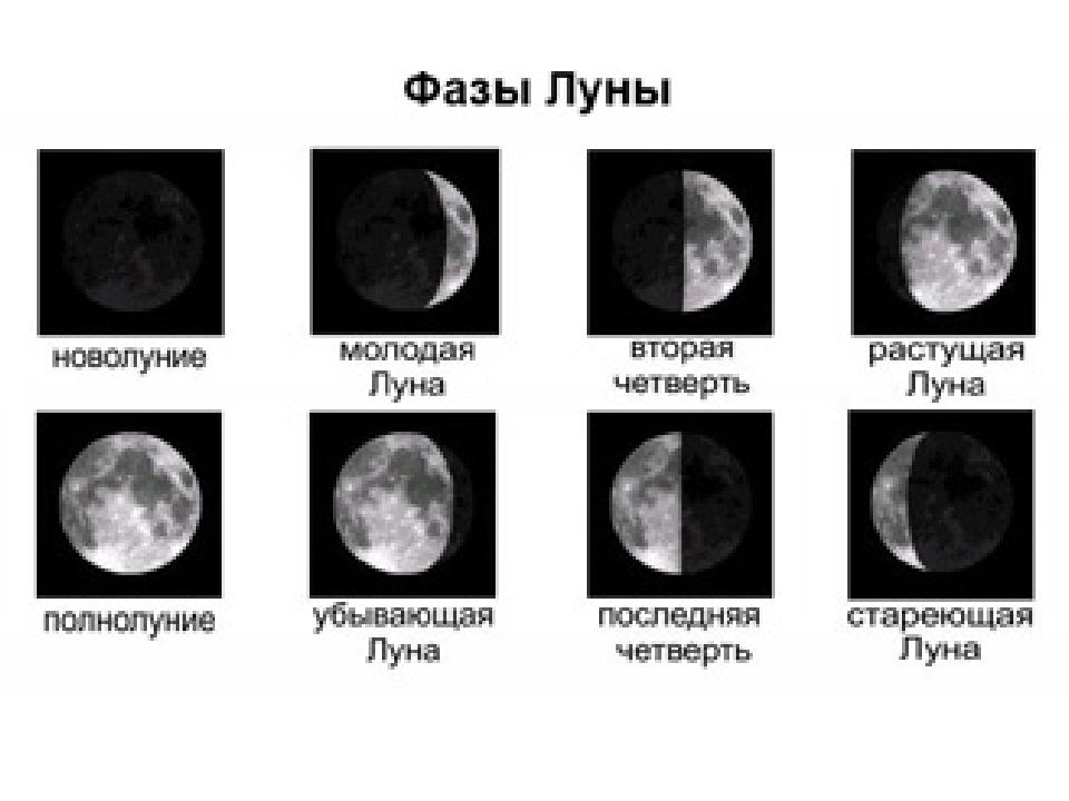 фотограф хоть наблюдение за луной в течение месяца в картинках 1 класс это может
