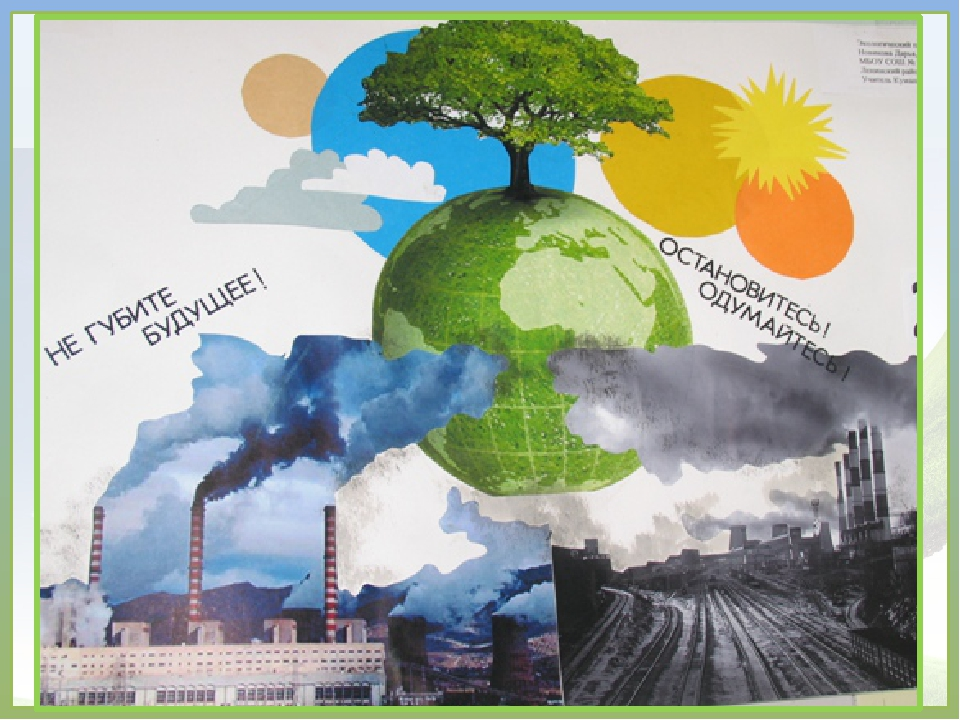идет уровне постеры на экологическую тему лугов слышатся необычные