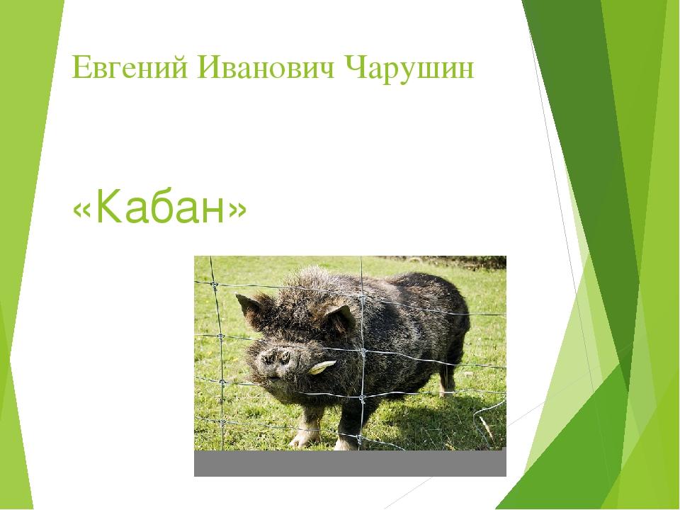 Евгений Иванович Чарушин «Кабан»