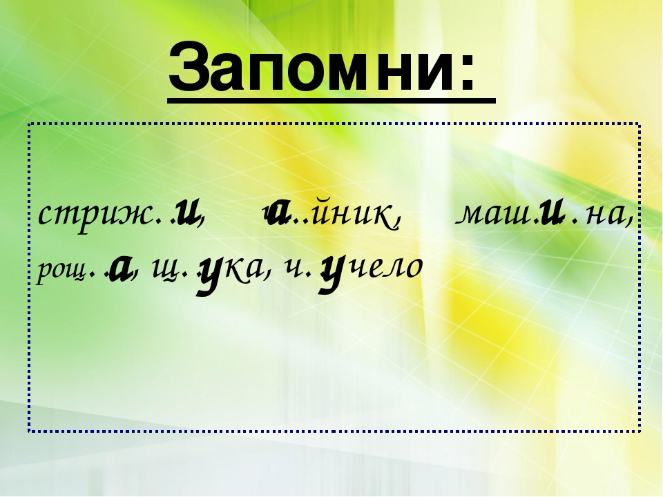 Запомни: стриж…, ч...йник, маш.…на, рощ…, щ…ка, ч…чело а а у у и и