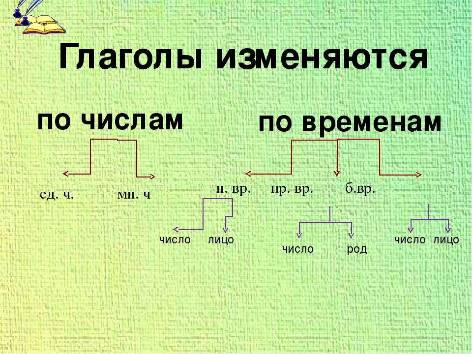 ед. ч. мн. ч н. вр. пр. вр. б.вр. число лицо число род число лицо Глаголы изм...
