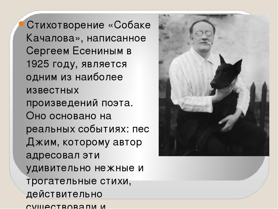 картинка к стиху собаке качалова после роли