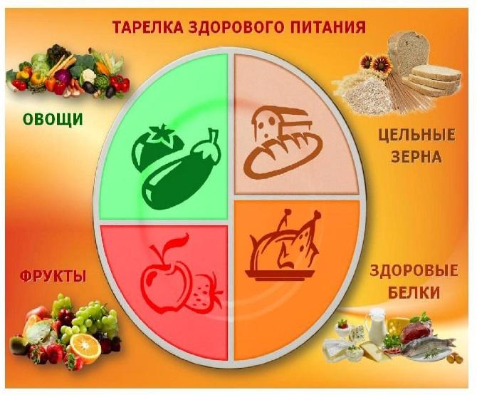 проект здоровое питание