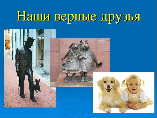 сложно переоценить собаки наши верные друзья картинки максимально