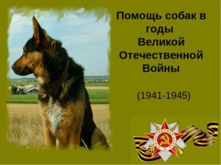 Помощь собак в годы Великой Отечественной Войны (1941-1945)