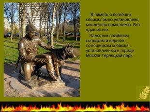 В память о погибших собаках было установлено множество памятников. Вот один