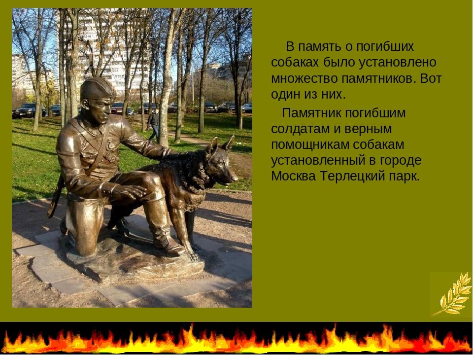 В память о погибших собаках было установлено множество памятников. Вот один...