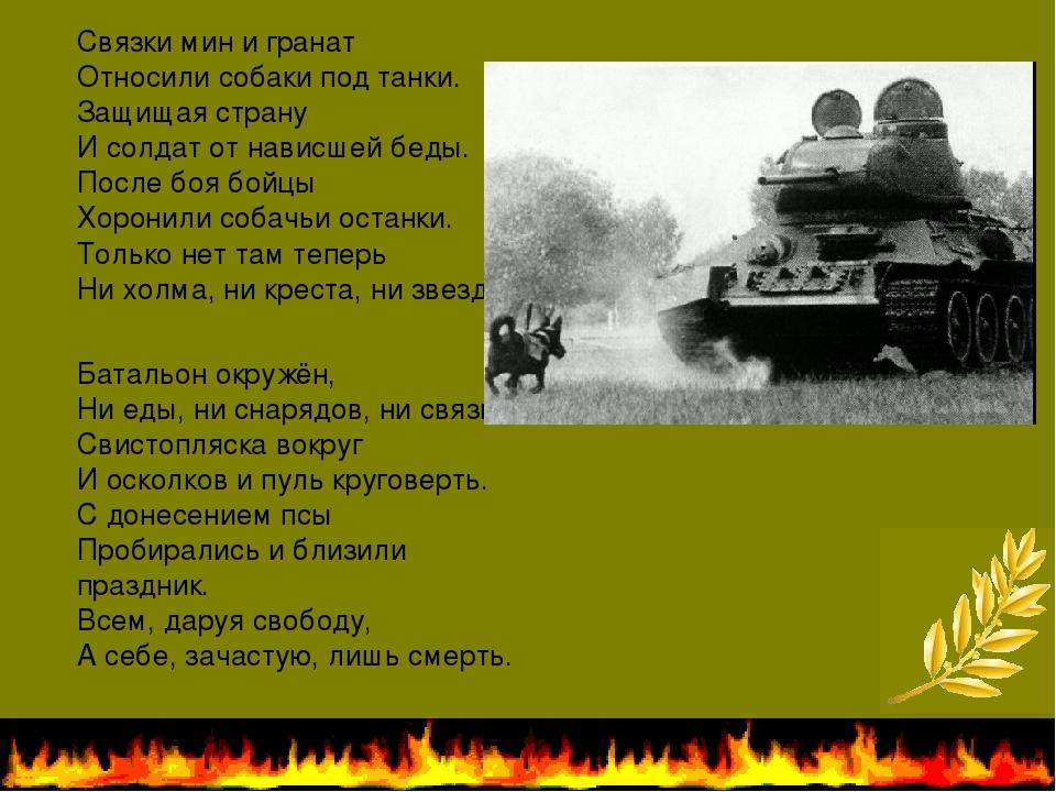 Связки мин и гранат Относили собаки под танки. Защищая страну И солдат от на...