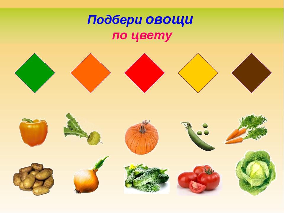 самом формы овощей в картинках чем