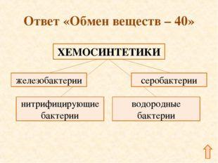 Ответ «Обмен веществ – 40»